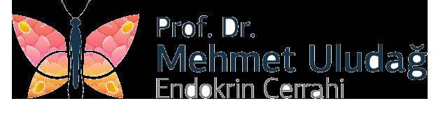 Dr. Mehmet Uludağ